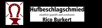 Ihr Hufschmied in Berlin und Brandenburg | info@derhufschmied-burkert.de